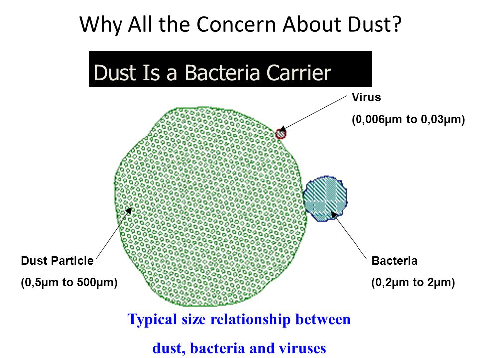 Why All the Concern About Dust.