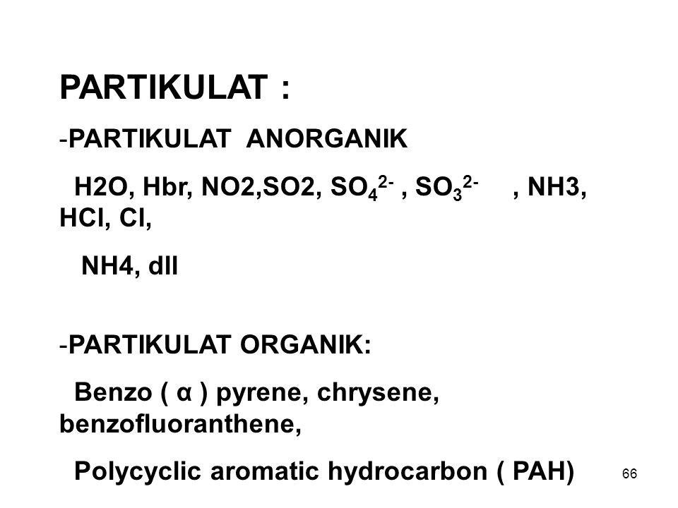 66 PARTIKULAT : -PARTIKULAT ANORGANIK H2O, Hbr, NO2,SO2, SO 4 2-, SO 3 2-, NH3, HCl, Cl, NH4, dll -PARTIKULAT ORGANIK: Benzo ( α ) pyrene, chrysene, b