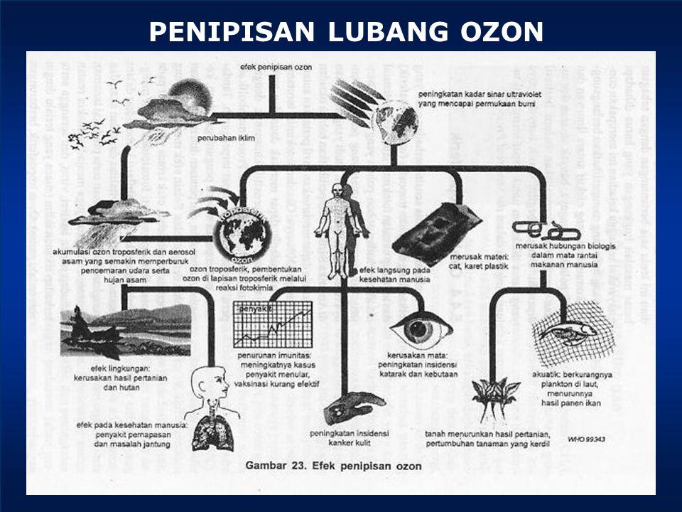 PENIPISAN LUBANG OZON
