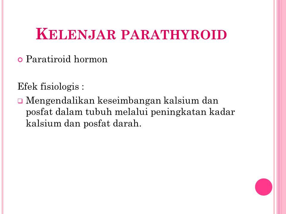 K ELENJAR PARATHYROID Paratiroid hormon Efek fisiologis :  Mengendalikan keseimbangan kalsium dan posfat dalam tubuh melalui peningkatan kadar kalsiu