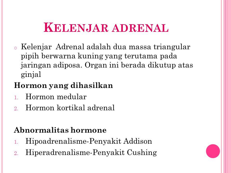 K ELENJAR ADRENAL o Kelenjar Adrenal adalah dua massa triangular pipih berwarna kuning yang terutama pada jaringan adiposa. Organ ini berada dikutup a