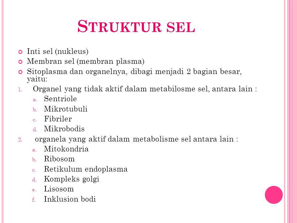 S TRUKTUR SEL Inti sel (nukleus) Membran sel (membran plasma) Sitoplasma dan organelnya, dibagi menjadi 2 bagian besar, yaitu: 1. Organel yang tidak a