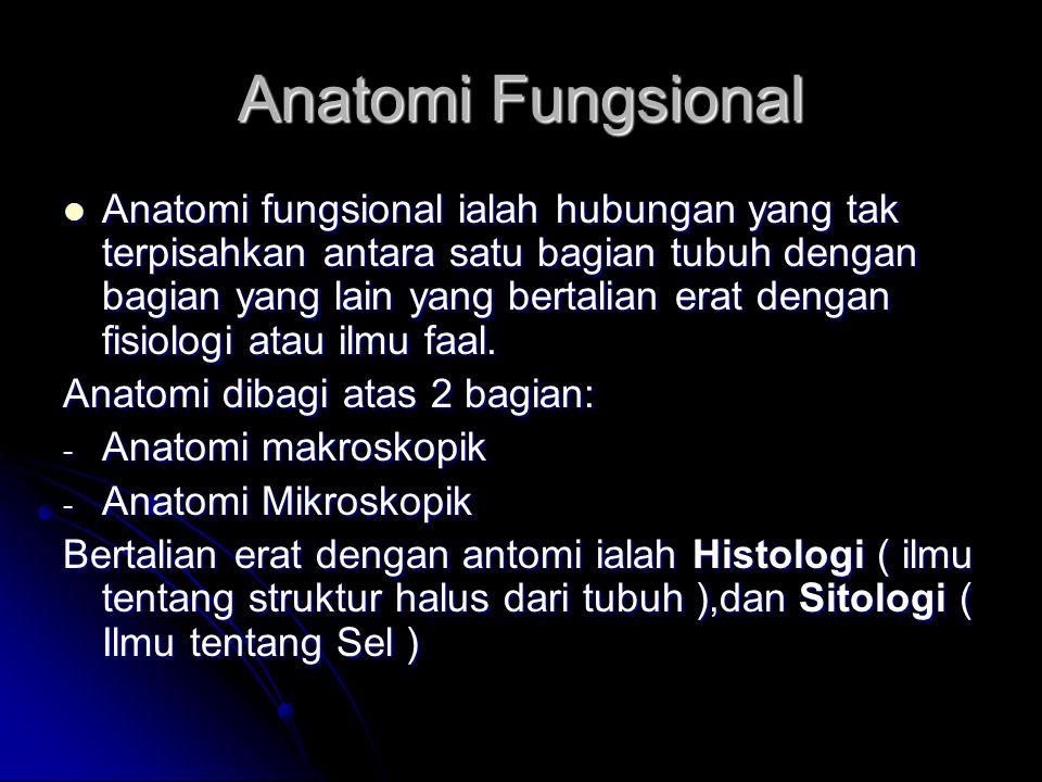 Anatomi Fungsional Anatomi fungsional ialah hubungan yang tak terpisahkan antara satu bagian tubuh dengan bagian yang lain yang bertalian erat dengan