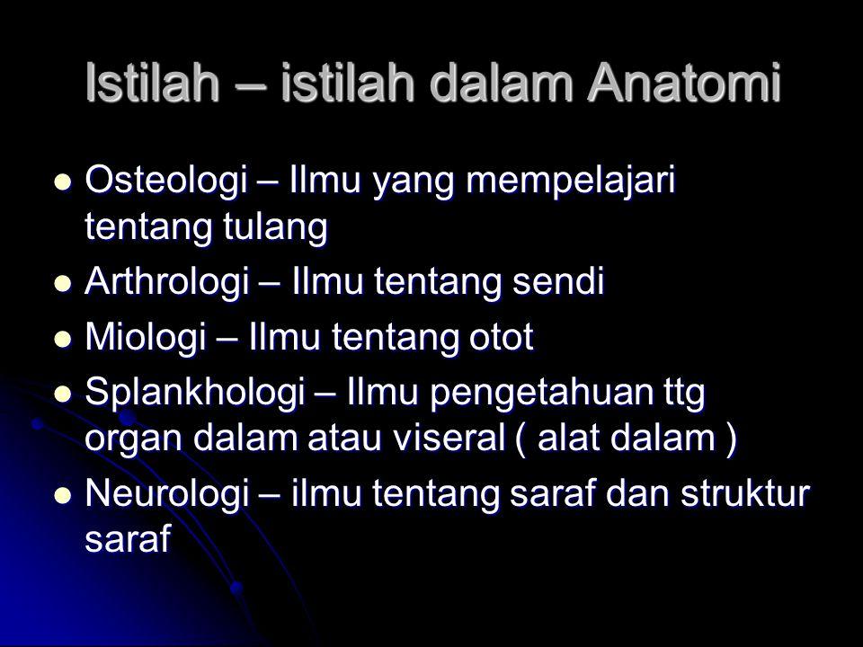 Istilah – istilah dalam Anatomi Osteologi – Ilmu yang mempelajari tentang tulang Osteologi – Ilmu yang mempelajari tentang tulang Arthrologi – Ilmu te