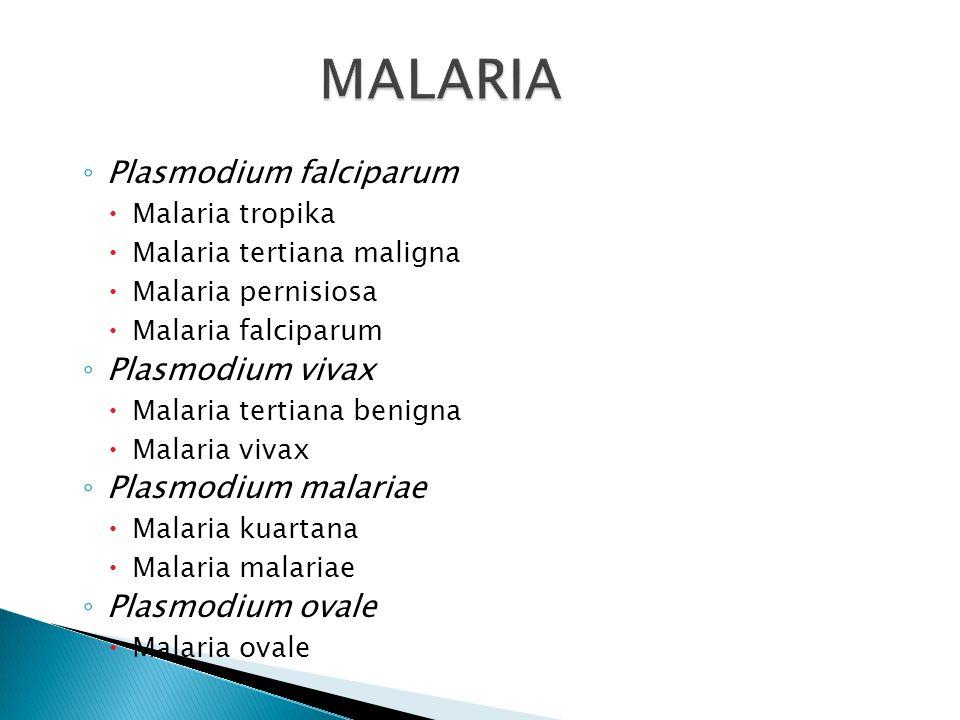  Disebabkan oleh genus Plasmodium  Termasuk dalam Protozoa darah  Spesies yang penting ada 4 ◦ Plasmodium falciparum ◦ Plasmodium vivax ◦ Plasmodiu