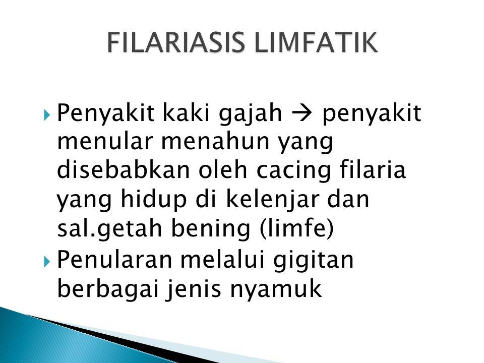  Memutuskan mata rantai penularan filariasis dengan pemberian obat massal pencegahan filariasis (POMP Filariasis) di daerah endemis filariasis terint