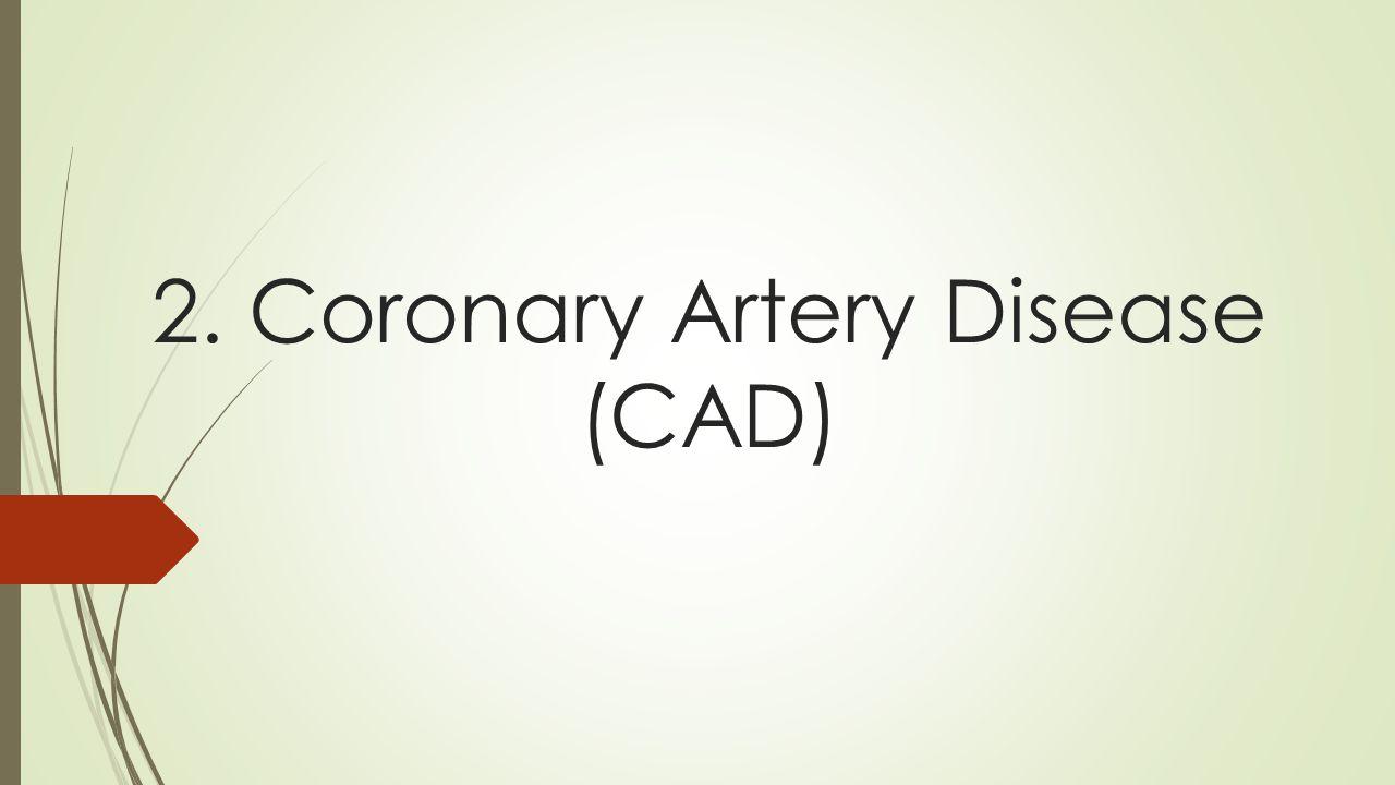 2. Coronary Artery Disease (CAD)