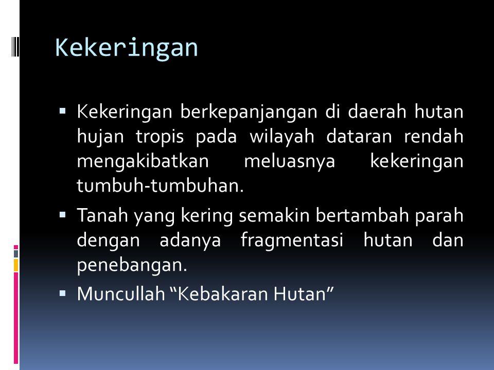 Kebakaran Hutan di Borneo  Kebakaran sebelum tahun 1982  Kebakaran di Kalimantan Tengah terjadi pada tahun 1846 selama musim kemarau, terjadi di bagian barat, tengah, dan timur Kalimantan.