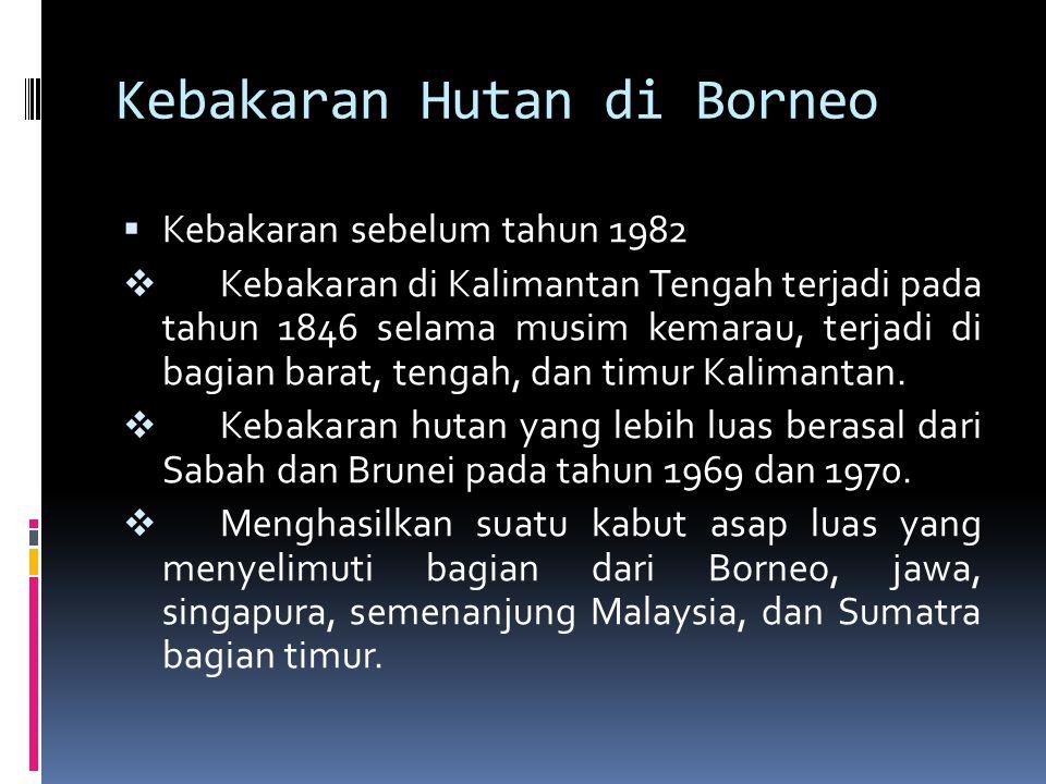 Kebakaran Hutan di Borneo  Kebakaran sebelum tahun 1982  Kebakaran di Kalimantan Tengah terjadi pada tahun 1846 selama musim kemarau, terjadi di bag