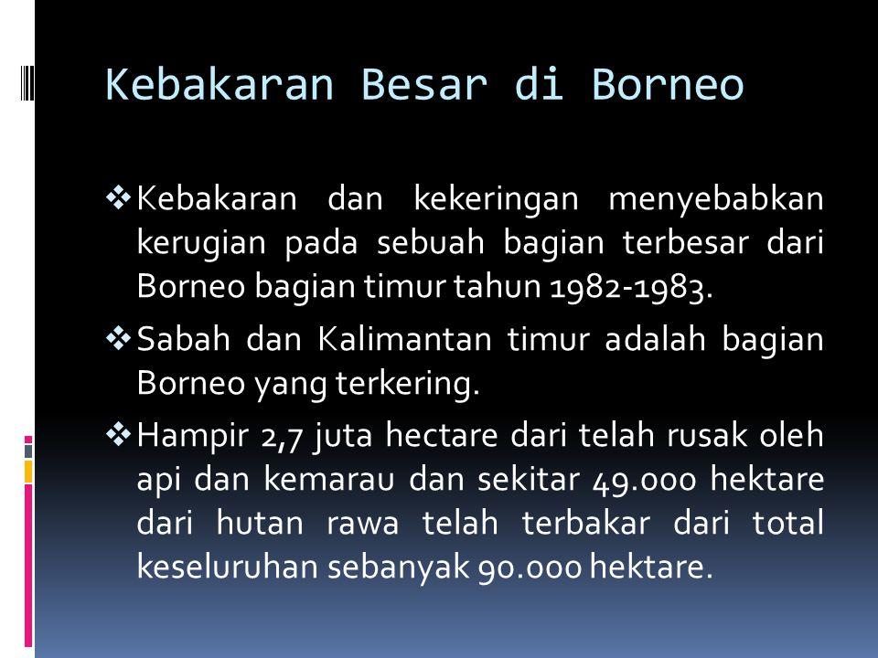  Kebakaran tahun 1987,1991, dan 1994  Pada tahun 1991 menghancurkan saluran besar hutan rawa dan perkebunan di selatan, timur, dan Kalimantan Tengah, dan juga Jawa dan Sumatera.
