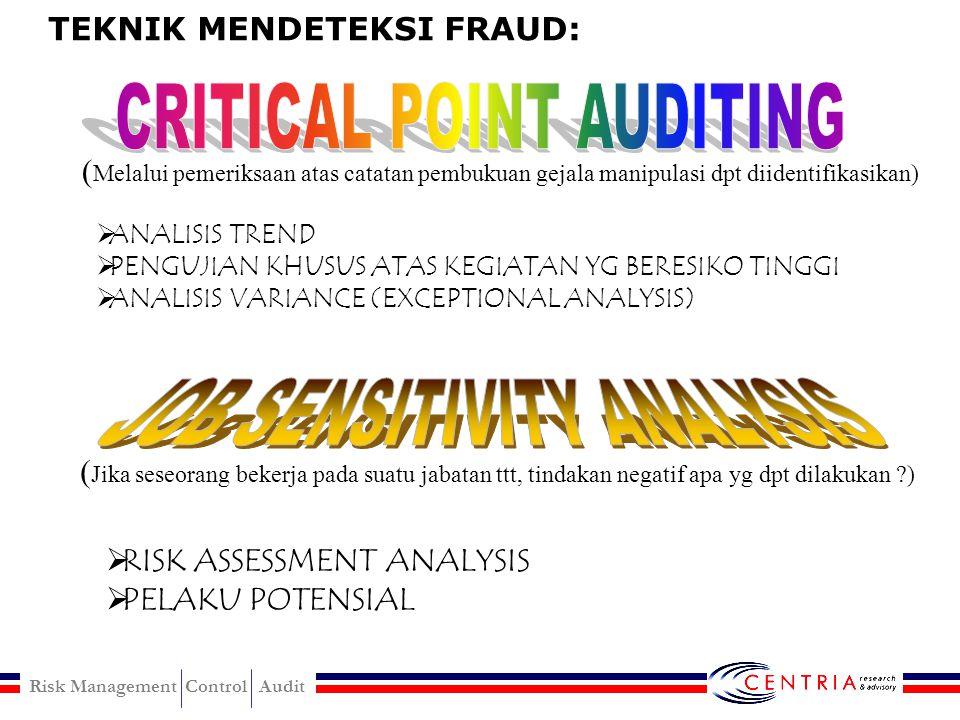 Fraudulent Statement Financial Non-financial
