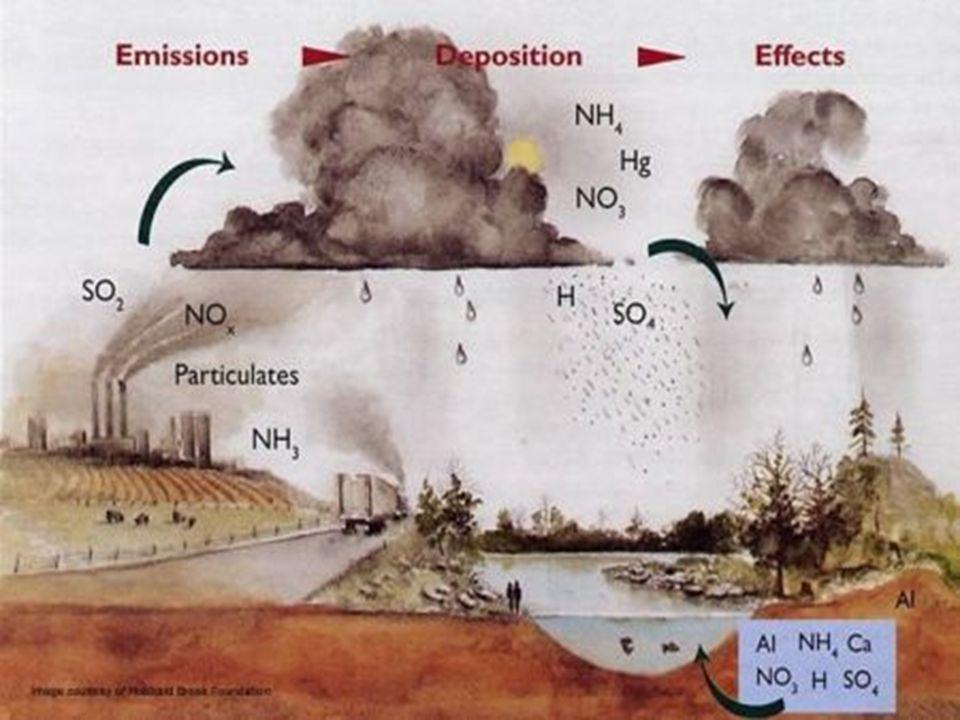 Ancaman pengendapan asam Pengendapan asam merupakan ancaman terhadap kualitas air Pengendapan asam meliputi hujan, kabut, dan salju dengan pH < 5,6 Pengendapan asam disebabkan oleh keberadaan sulfur oksida (SO 4 ) dan nitrogen oksida (NO 2 ) di atmosfer Mampu mengikis sejumlah ion mineral (kalium dan magnesium) penyangga larutan tanah Pengurangan polusi udara membantu mengurangi hujan asam