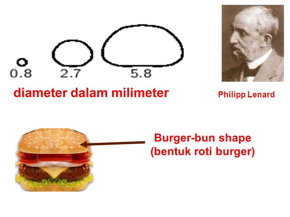 diameter dalam milimeter Philipp Lenard Burger-bun shape (bentuk roti burger)