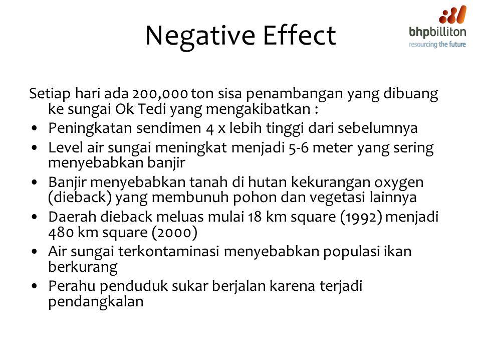 Negative Effect Setiap hari ada 200,000 ton sisa penambangan yang dibuang ke sungai Ok Tedi yang mengakibatkan : Peningkatan sendimen 4 x lebih tinggi