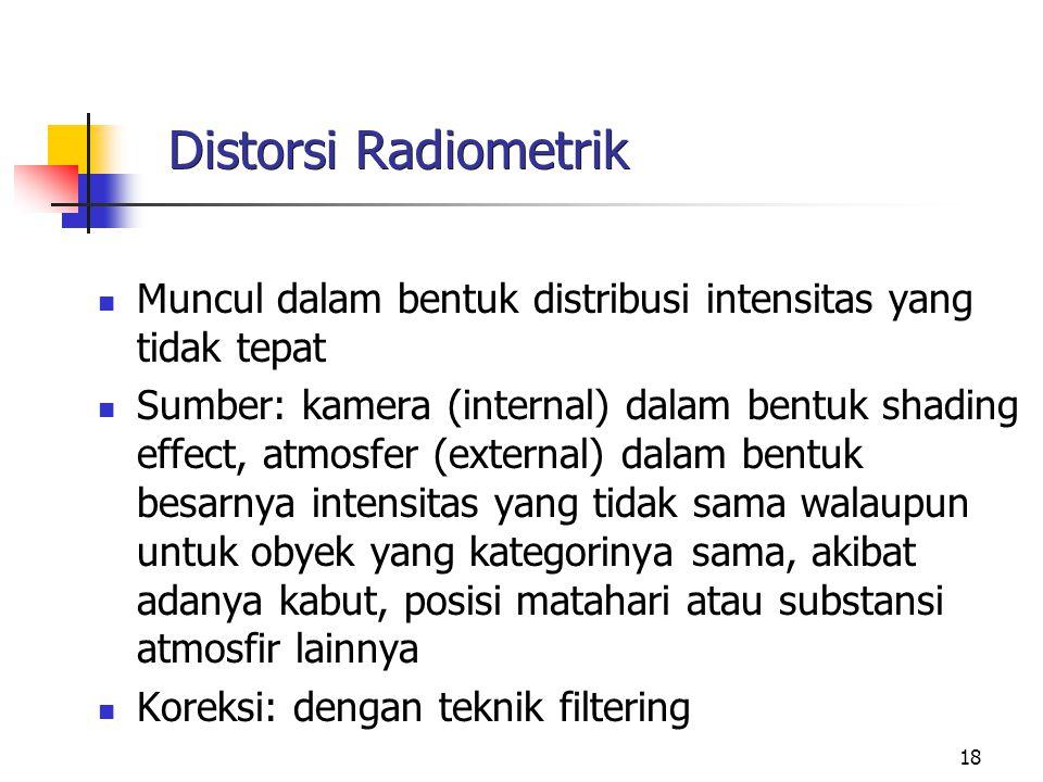 18 Distorsi Radiometrik Muncul dalam bentuk distribusi intensitas yang tidak tepat Sumber: kamera (internal) dalam bentuk shading effect, atmosfer (ex