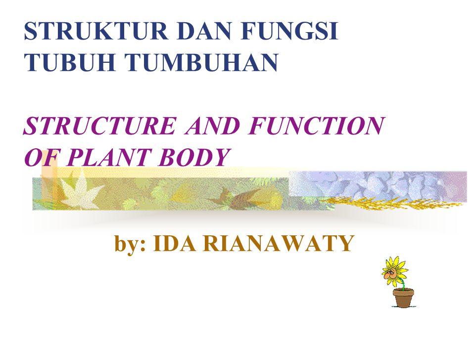 Akar, batang dan daun merupakan alat tubuh pokok (organ pokok) pada tumbuhan, sedangkan Bunga, buah, dan biji merupakan organ khusus pada tumbuhan.