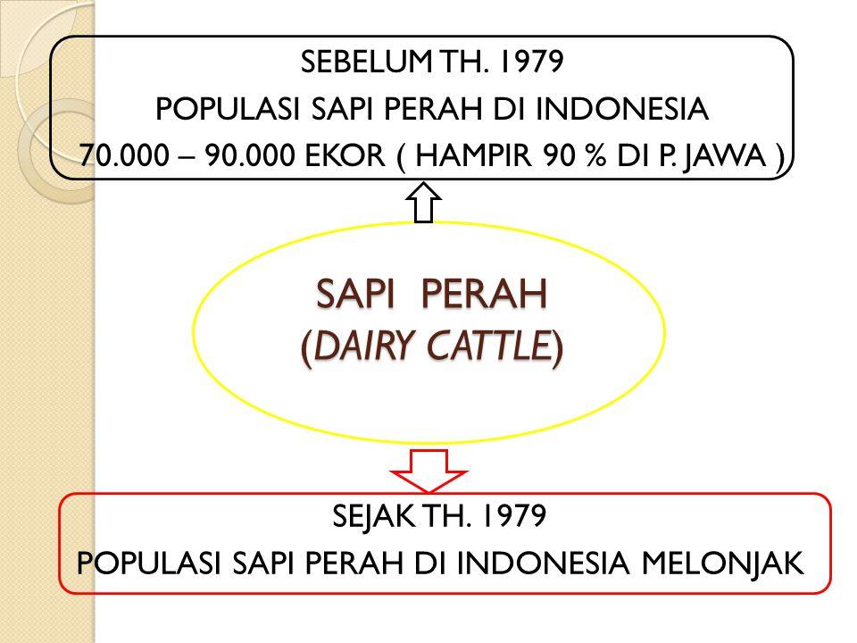 SAPI PERAH (DAIRY CATTLE) SEBELUM TH. 1979 POPULASI SAPI PERAH DI INDONESIA 70.000 – 90.000 EKOR ( HAMPIR 90 % DI P. JAWA ) SEJAK TH. 1979 POPULASI SA