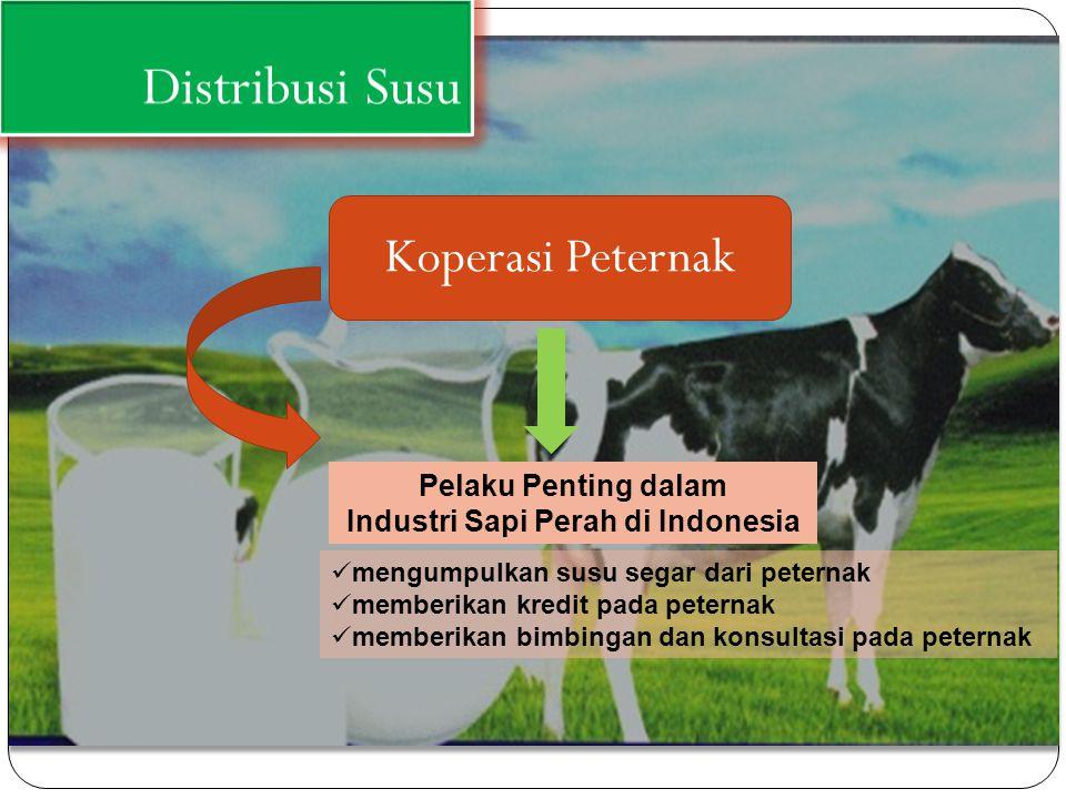 Distribusi Susu Koperasi Peternak mengumpulkan susu segar dari peternak memberikan kredit pada peternak memberikan bimbingan dan konsultasi pada peter