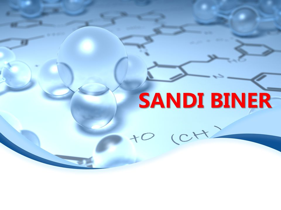 SANDI BINER 1