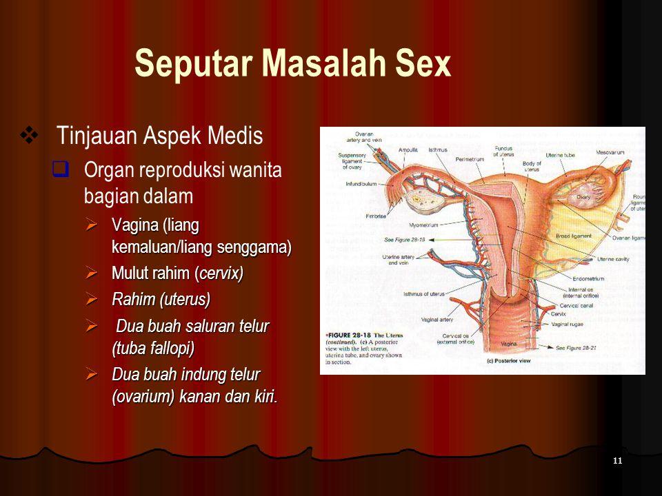 11 Seputar Masalah Sex  Tinjauan Aspek Medis  Organ reproduksi wanita bagian dalam  Vagina (liang kemaluan/liang senggama)  Mulut rahim ( cervix)