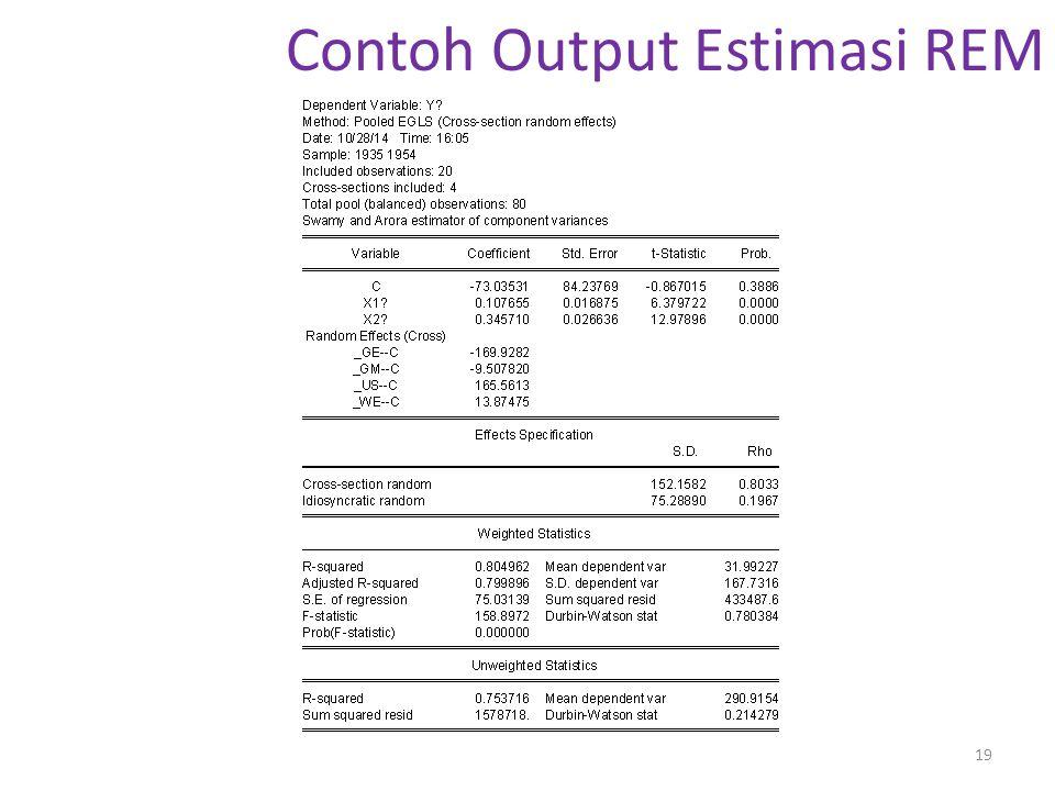 Contoh Output Estimasi REM 19