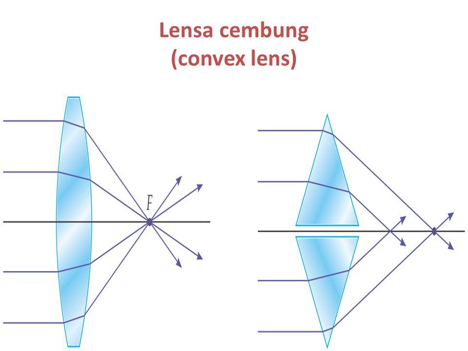 Lensa cembung (convex lens)