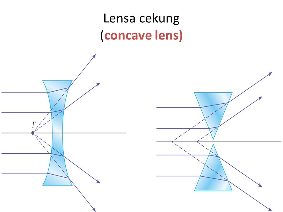 These diagrams show the principal rays for both types of lenses: