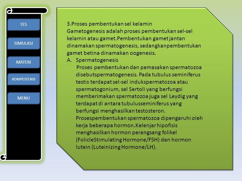 TES SIMULASI MATERI KOMPESTENSI MENU 3.Proses pembentukan sel kelamin Gametogenesis adalah proses pembentukan sel-sel kelamin atau gamet.Pembentukan g