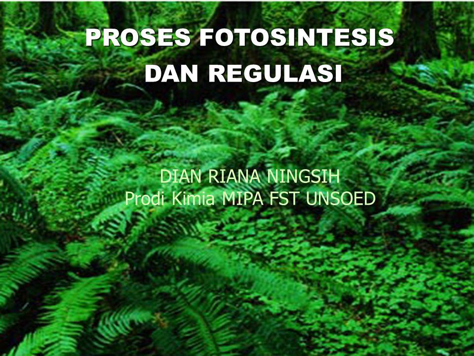 Fotosistem Fosistem IIFotosistem I