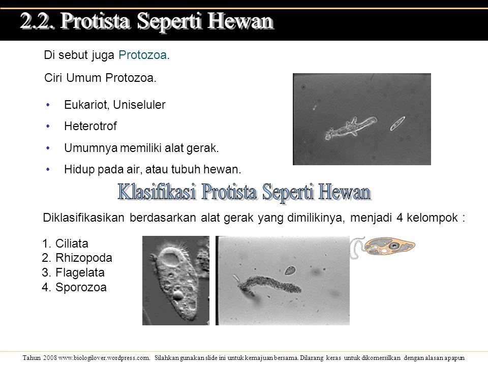 Tahun 2008 www.biologilover.wordpress.com. Silahkan gunakan slide ini untuk kemajuan bersama. Dilarang keras untuk dikomersilkan dengan alasan apapun
