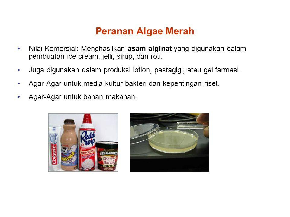Peranan Algae Merah Nilai Komersial: Menghasilkan asam alginat yang digunakan dalam pembuatan ice cream, jelli, sirup, dan roti. Juga digunakan dalam