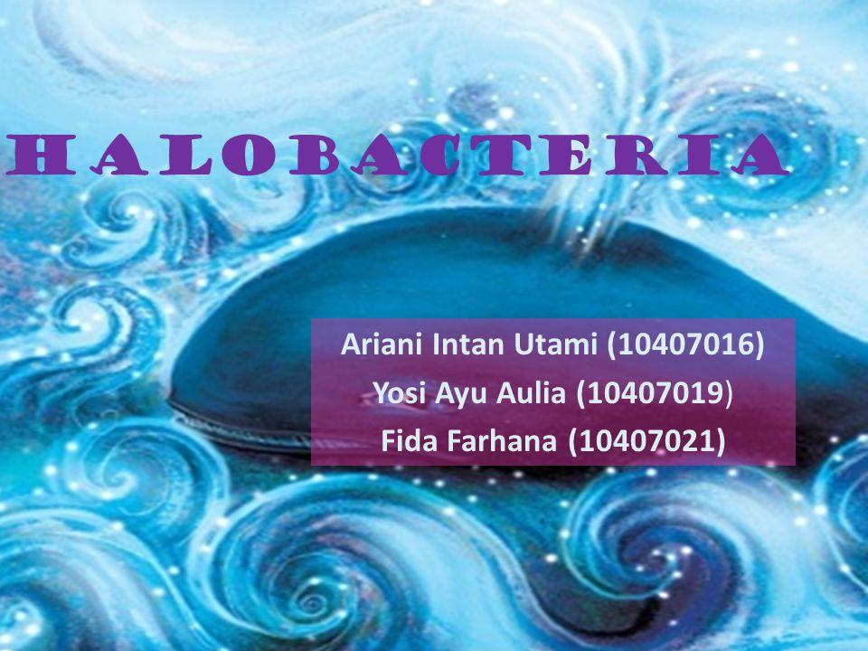 Halobacteria Ariani Intan Utami (10407016) Yosi Ayu Aulia (10407019) Fida Farhana (10407021)