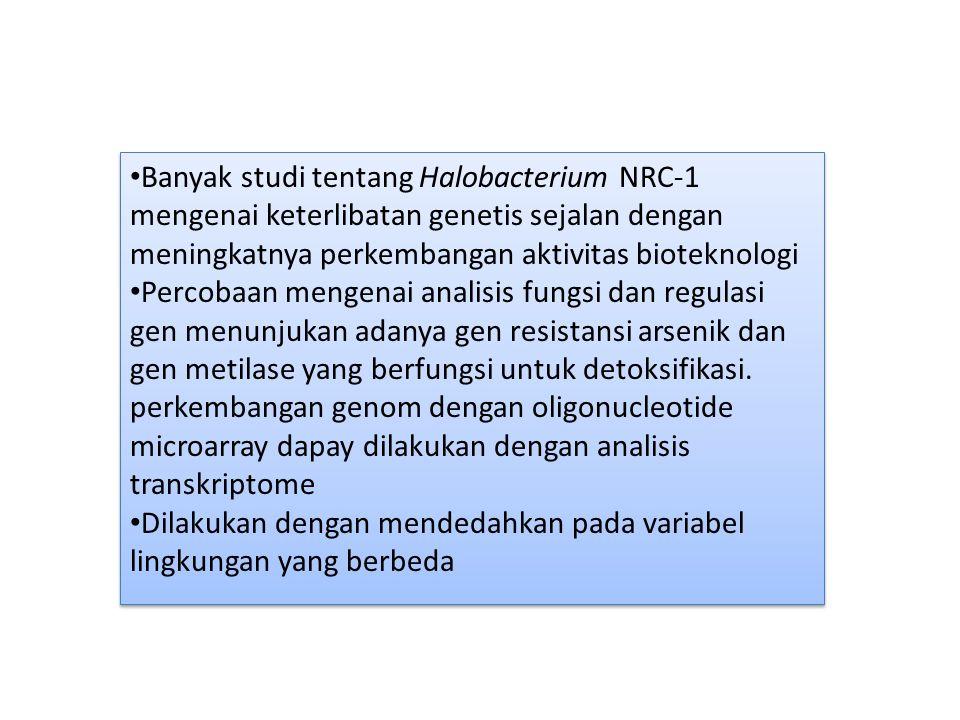 Banyak studi tentang Halobacterium NRC-1 mengenai keterlibatan genetis sejalan dengan meningkatnya perkembangan aktivitas bioteknologi Percobaan menge