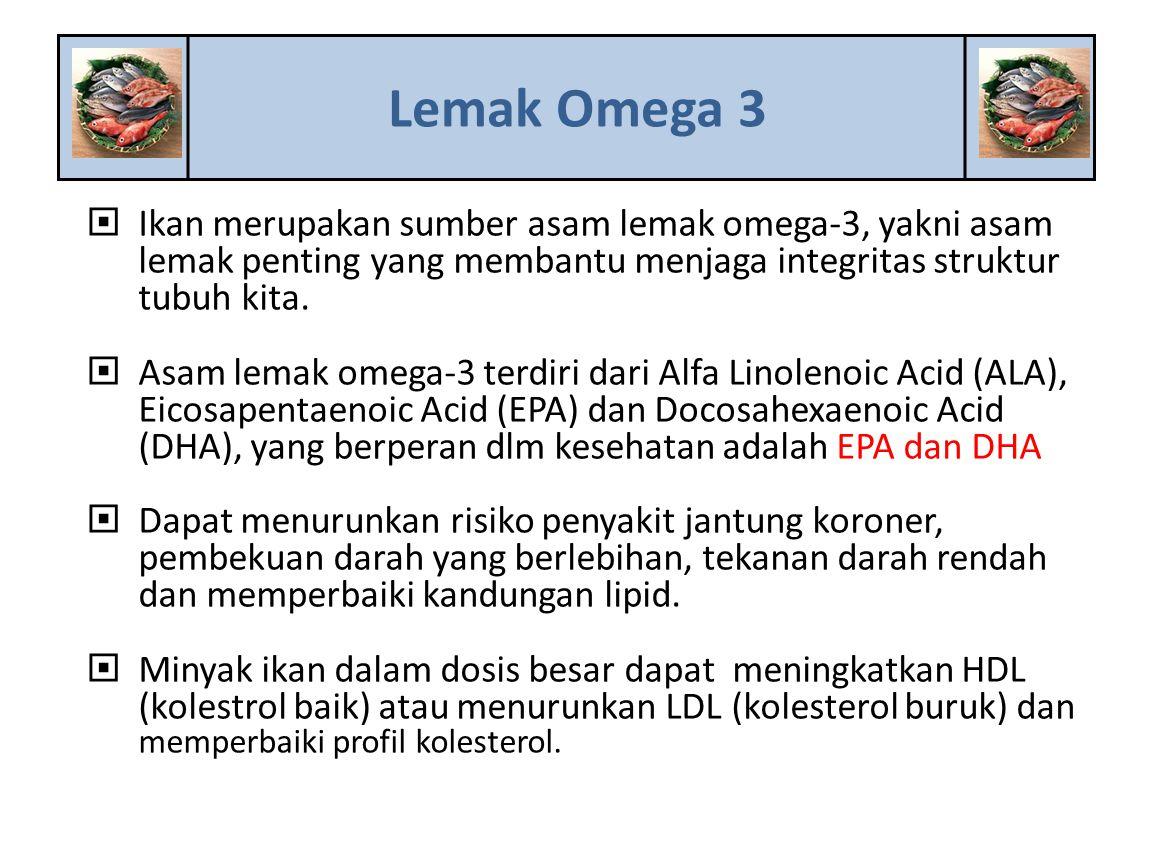  Ikan merupakan sumber asam lemak omega-3, yakni asam lemak penting yang membantu menjaga integritas struktur tubuh kita.  Asam lemak omega-3 terdir