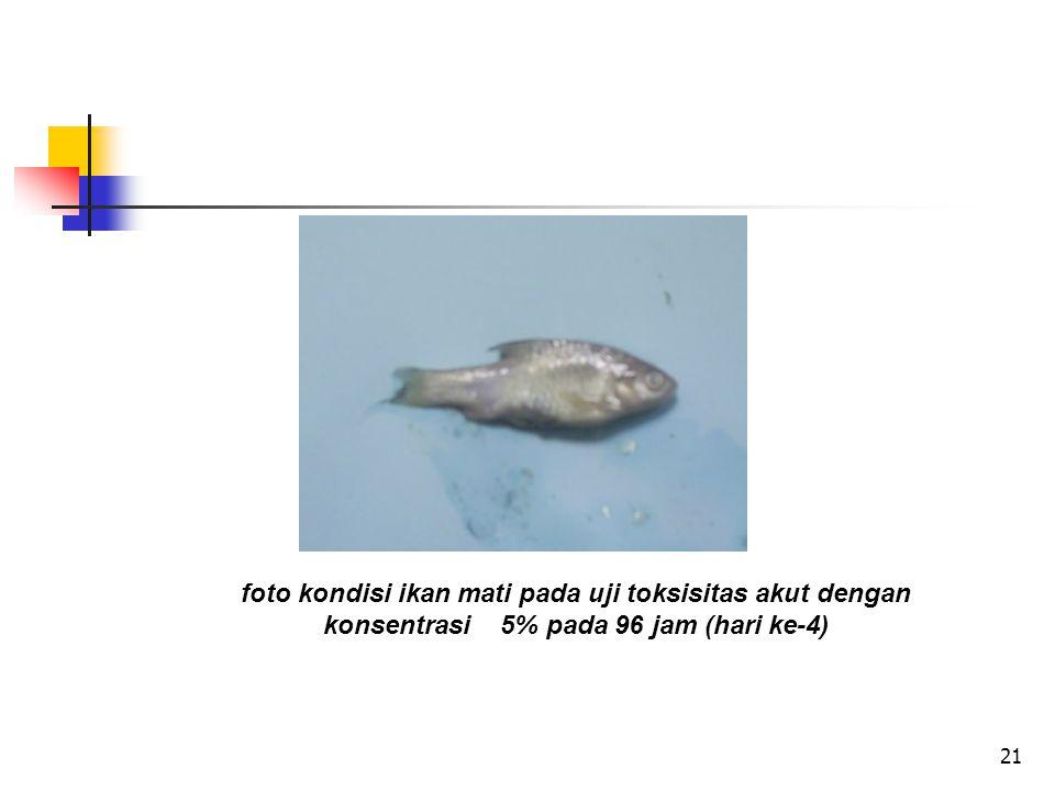 21 foto kondisi ikan mati pada uji toksisitas akut dengan konsentrasi 5% pada 96 jam (hari ke-4)