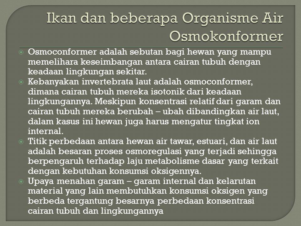  Osmoconformer adalah sebutan bagi hewan yang mampu memelihara keseimbangan antara cairan tubuh dengan keadaan lingkungan sekitar.  Kebanyakan inver