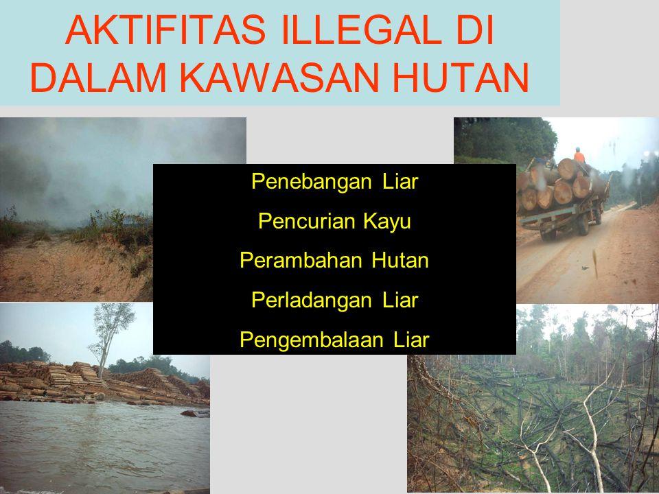 AKTIFITAS ILLEGAL DI DALAM KAWASAN HUTAN Penebangan Liar Pencurian Kayu Perambahan Hutan Perladangan Liar Pengembalaan Liar