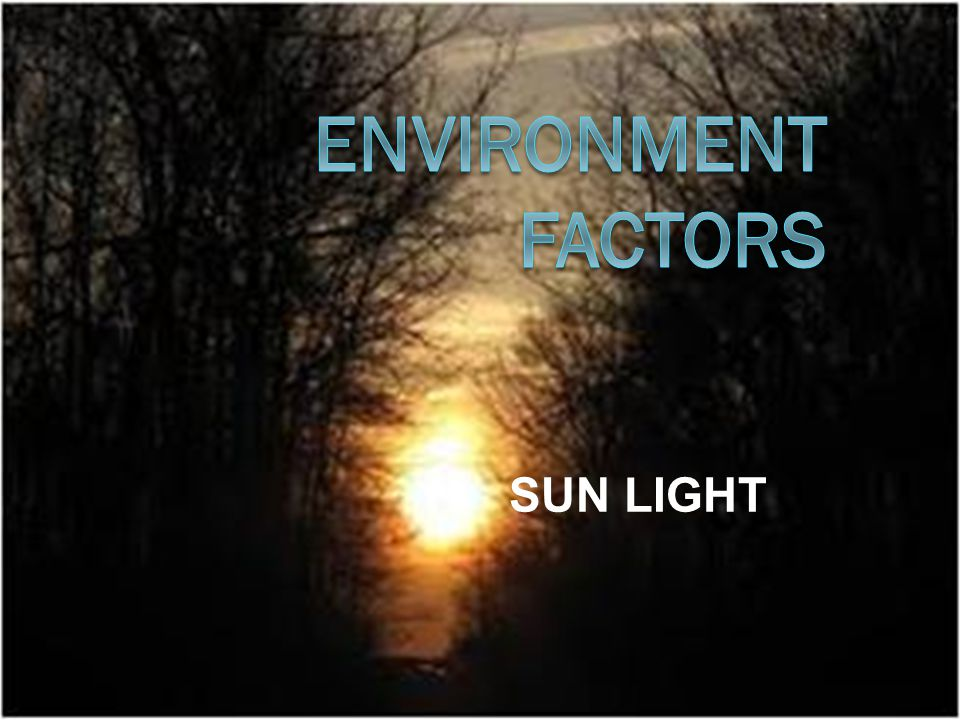 Contents Solar Radiation The Atmosphere as Filter and ReflectorThe Ecological Significance of Light on EarthCharacteristics of Visible Light ExposureDeterminant of Variations in the Light Environment Other Forms of Response to Light Managing The Light Environment in Agroecosystem