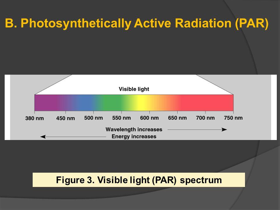 B. Photosynthetically Active Radiation (PAR) Figure 3. Visible light (PAR) spectrum