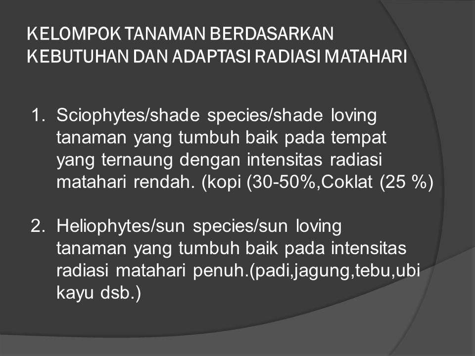 KELOMPOK TANAMAN BERDASARKAN KEBUTUHAN DAN ADAPTASI RADIASI MATAHARI 1. Sciophytes/shade species/shade loving tanaman yang tumbuh baik pada tempat yan