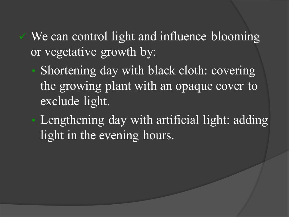 We can control light and influence blooming or vegetative growth by: Shortening day with black cloth: covering the growing plant with an opaque cover