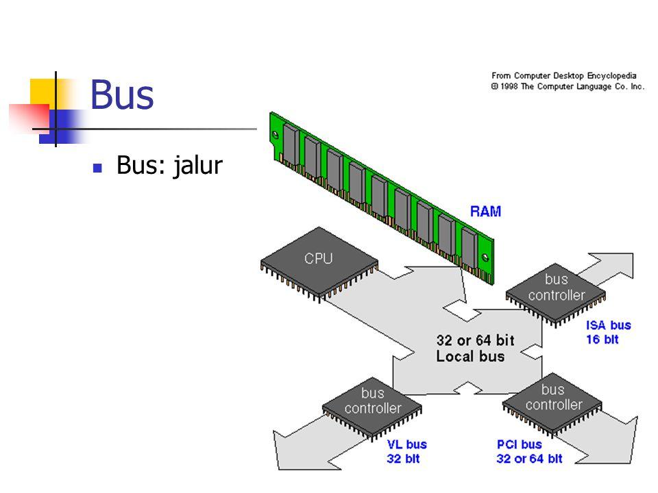 Bus Bus: jalur