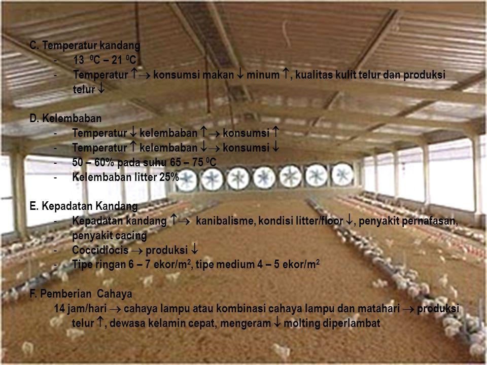 C. Temperatur kandang - 13 0 C – 21 0 C - Temperatur  konsumsi makan  minum , kualitas kulit telur dan produksi telur  D. Kelembaban - Temperatur
