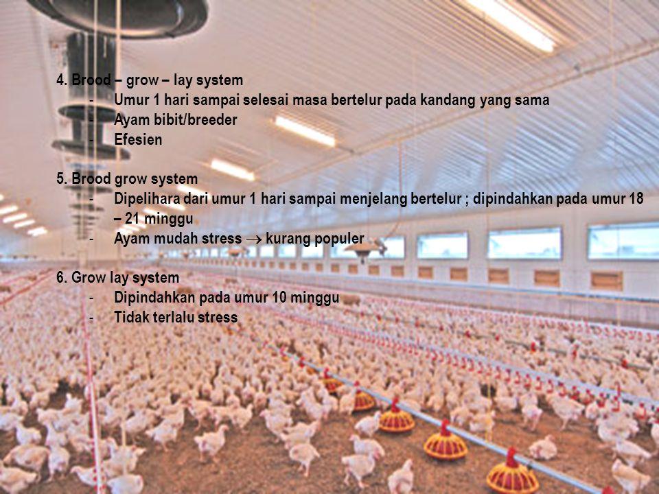 4. Brood – grow – lay system - Umur 1 hari sampai selesai masa bertelur pada kandang yang sama - Ayam bibit/breeder - Efesien 5. Brood grow system - D