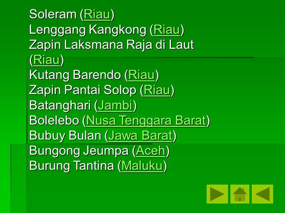 Soleram (Riau) Riau Lenggang Kangkong (Riau) Riau Zapin Laksmana Raja di Laut (Riau) Riau Kutang Barendo (Riau) Riau Zapin Pantai Solop (Riau) Riau Ba