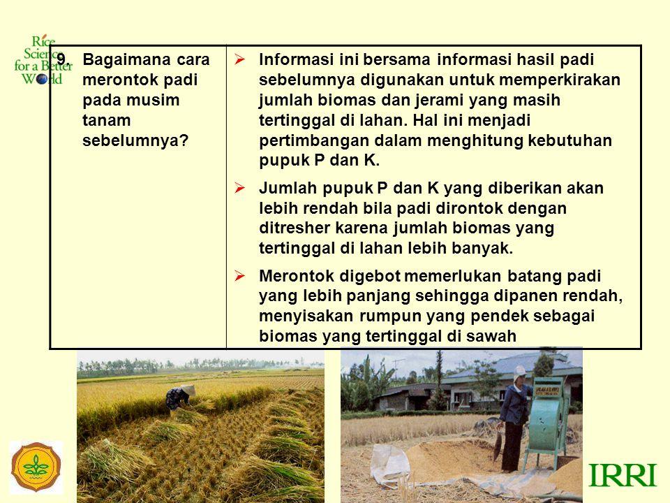 9.Bagaimana cara merontok padi pada musim tanam sebelumnya.