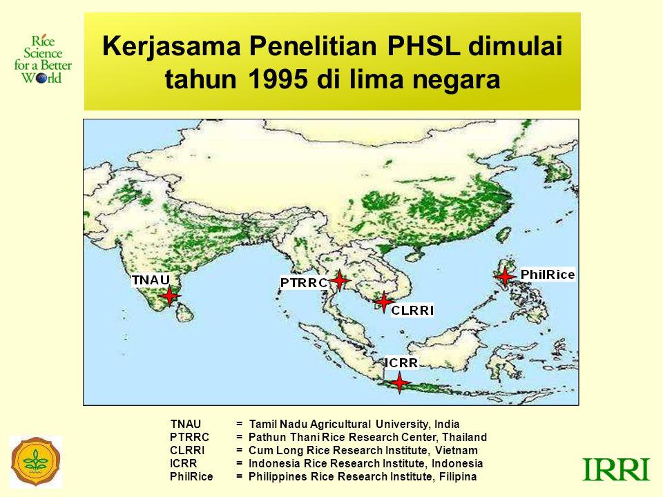 Kerjasama Penelitian PHSL dimulai tahun 1995 di lima negara TNAU= Tamil Nadu Agricultural University, India PTRRC= Pathun Thani Rice Research Center, Thailand CLRRI= Cum Long Rice Research Institute, Vietnam ICRR= Indonesia Rice Research Institute, Indonesia PhilRice= Philippines Rice Research Institute, Filipina