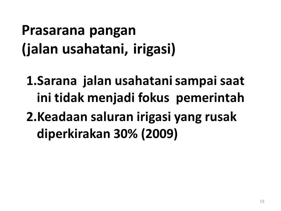 Prasarana pangan (jalan usahatani, irigasi) 1.Sarana jalan usahatani sampai saat ini tidak menjadi fokus pemerintah 2.Keadaan saluran irigasi yang rusak diperkirakan 30% (2009) 19