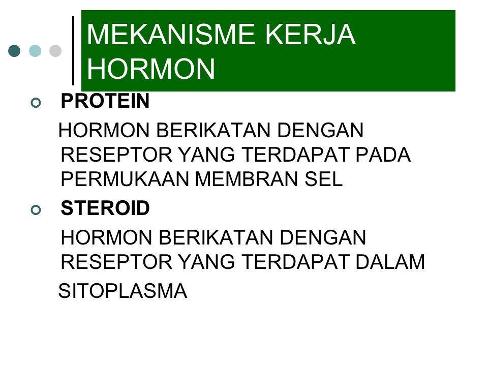 MEKANISME KERJA HORMON PROTEIN HORMON BERIKATAN DENGAN RESEPTOR YANG TERDAPAT PADA PERMUKAAN MEMBRAN SEL STEROID HORMON BERIKATAN DENGAN RESEPTOR YANG TERDAPAT DALAM SITOPLASMA