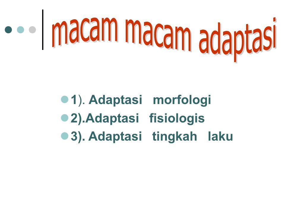 PENERAAN KADAR HORMON 1.PHYSICOCHEMICAL ASSAY/ METODA KIMIA 2.